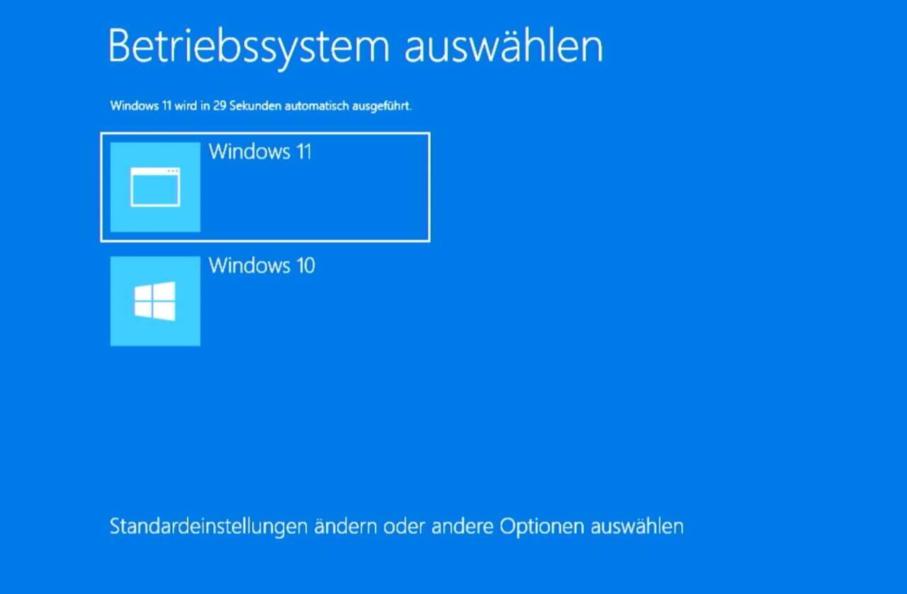 Windows 10 Windows 11 auswählen Dual-Boot